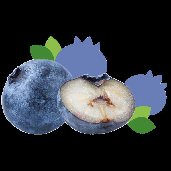 Blauwe-bes_De-Fruitigste