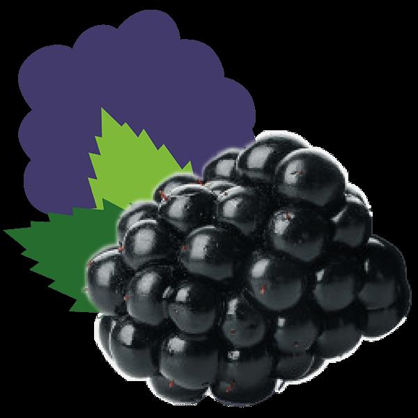 Braam_De-Fruitigste