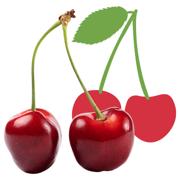 Kers_De-Fruitigste
