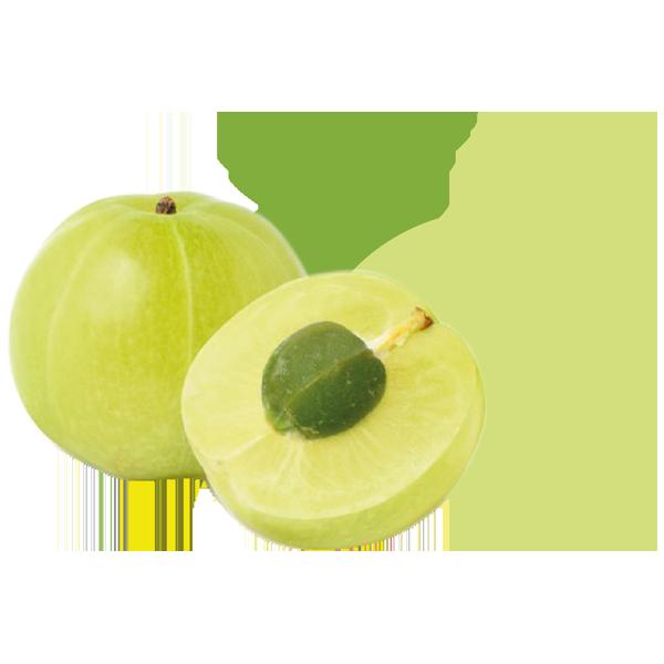 Kruisbes_De-Fruitigste