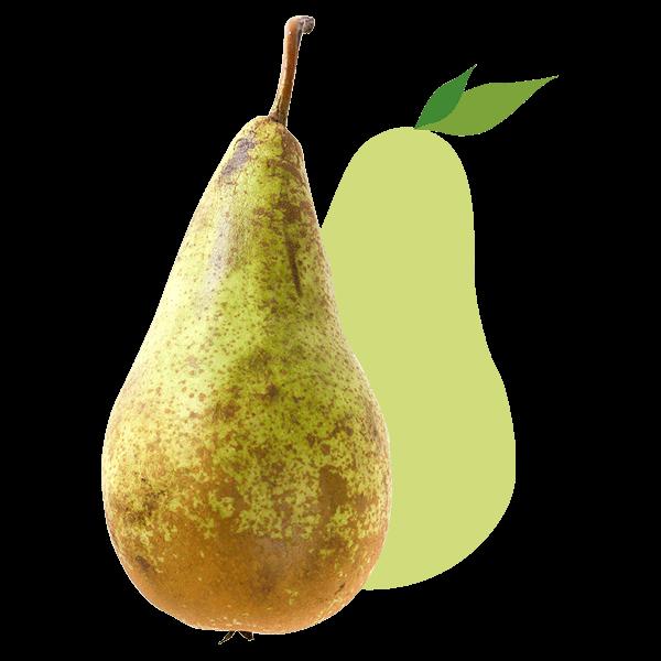 Peer_De-Fruitigste