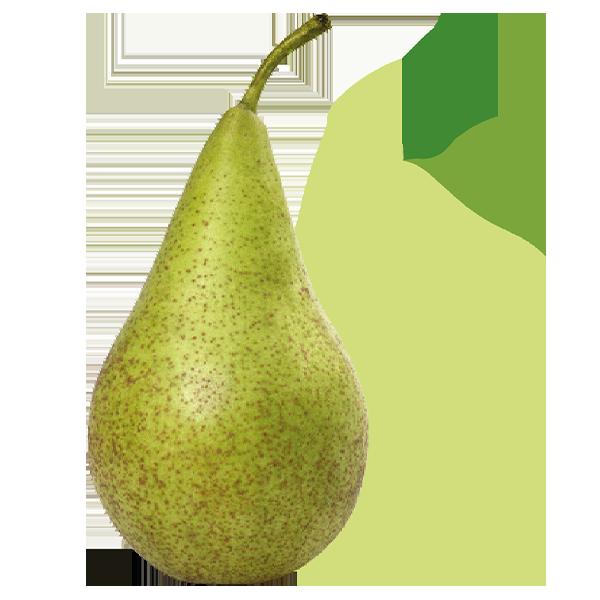 Peer_De-Fruitigste_WEB