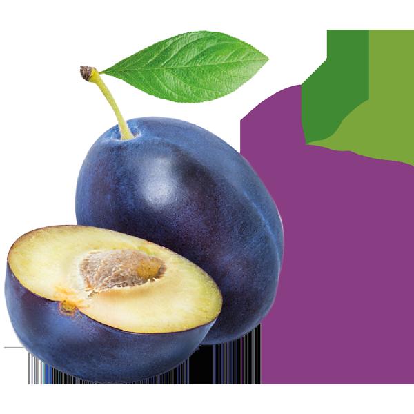 Pruim_De-Fruitigste